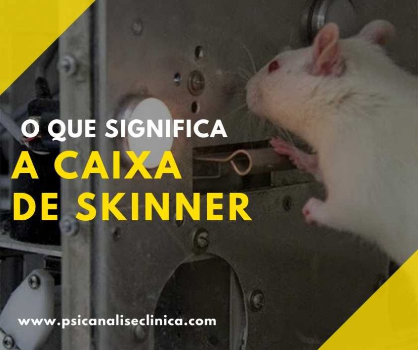 caixa de Skinner