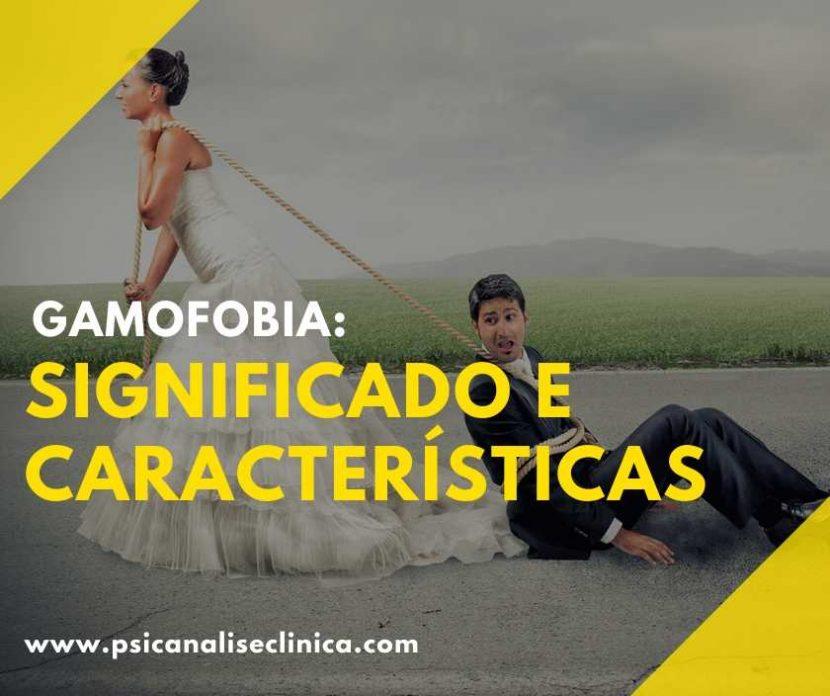 gamofobia