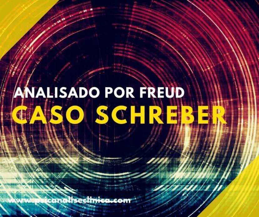 caso Schreber para Freud e a psicanálise