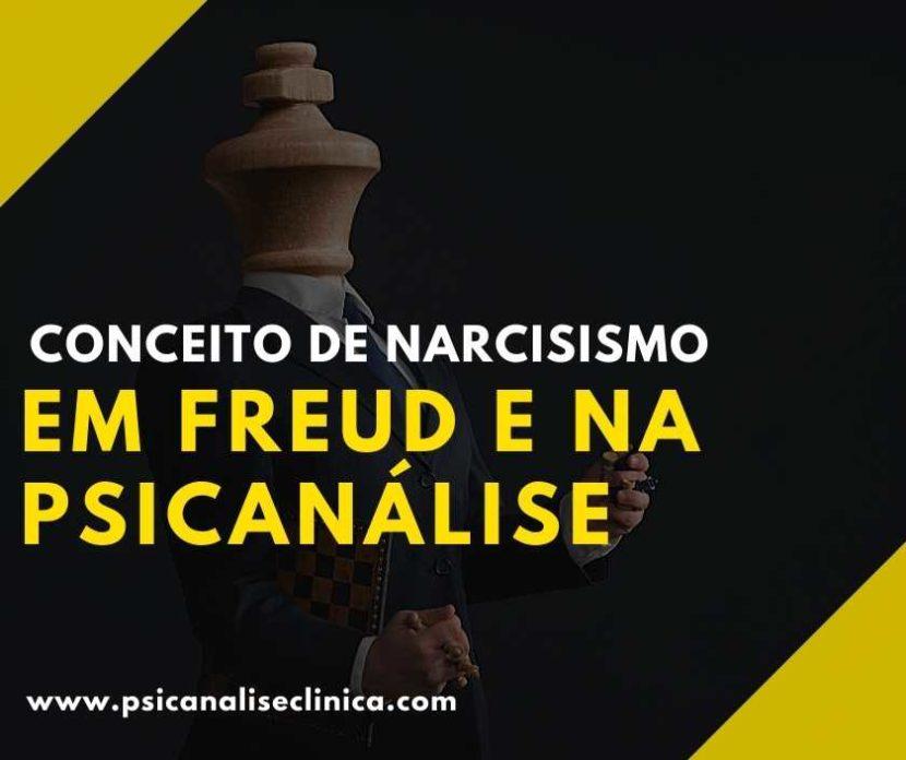 conceito de narcisismo